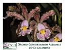 OCA 2012 calendar cover