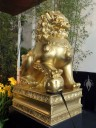 Golden lion statue at the entrance to the Pacific Orchid Expo