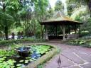 Rain shelter and lotus pond, Lyon Arboretum, Honolulu, Hawaii