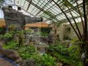 Ferns Greenhouse with waterfall, Montreal Botanical Garden, Canada
