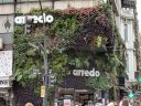 Vertical garden, plants growing on outdoor building walls above store, Recoleta neighborhood, Avenida Santa Fe, Buenos Aires, Argentina