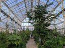 Temperate House, large glasshouse, Kew Gardens, RBG Kew, London, UK