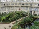 Inside the Temperate House, large glasshouse, Kew Gardens, RBG Kew, London, UK