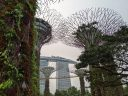 Supertrees in foreground and Marina Bays Sands Hotel in background, vertical gardens, lush green tropical growth, City in a Garden, Gardens by the Bay Nature Park, Singapore