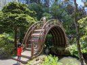 Drum Bridge with children, semicircular wooden bridge, Japanese Tea Garden, Golden Gate Park, San Francisco, California
